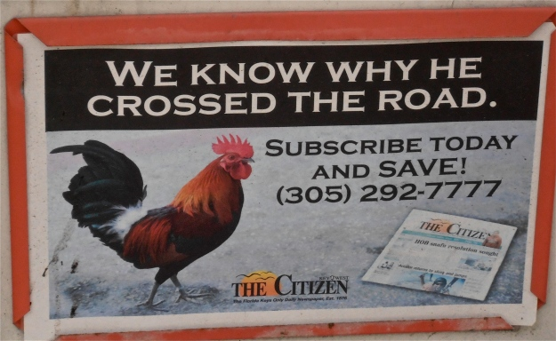 Rooster Advertising