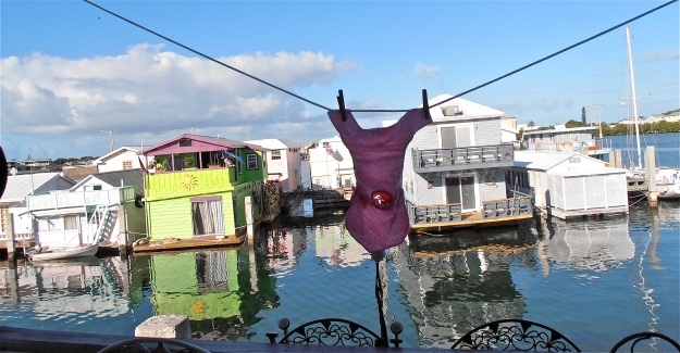 My view onto the pier this morning. In case anyone's wondering, that strange pink thing on the washing line is a dog nappy (diaper), as worn by Princess Pugsy. She had a stroke a while ago and is no longer in full control of her waterworks.