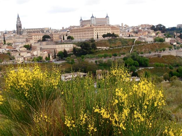 Toledo Spring Flowers