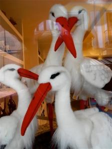 Storks for sale