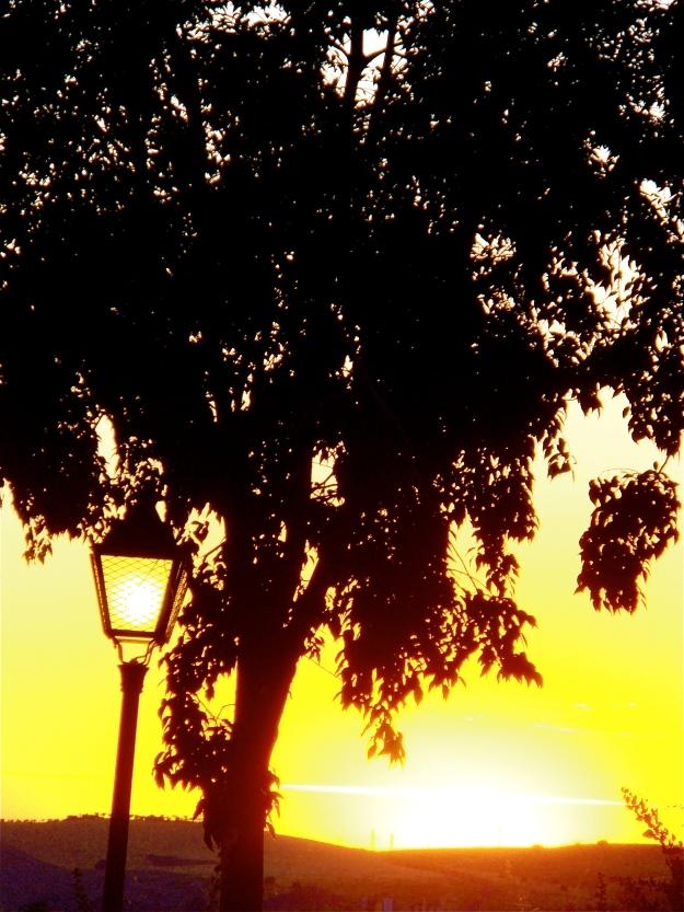 Sunset and lantern