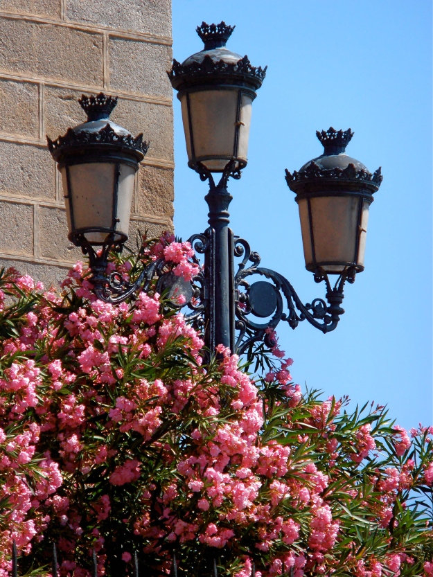 Toledo's photogenic street lamps almost steal the show...