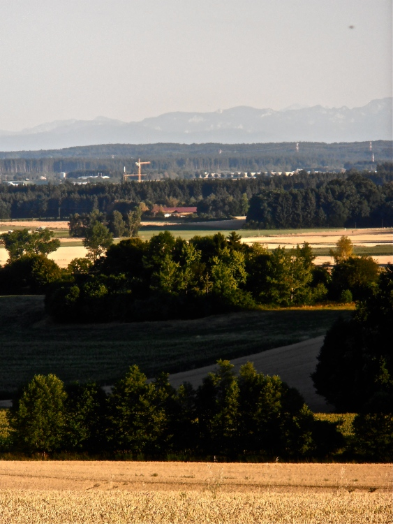 Fields, woods, and the Alps stretching across in the far distance. Quiet, peaceful, restorative.
