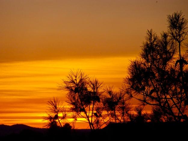 Sunset 1