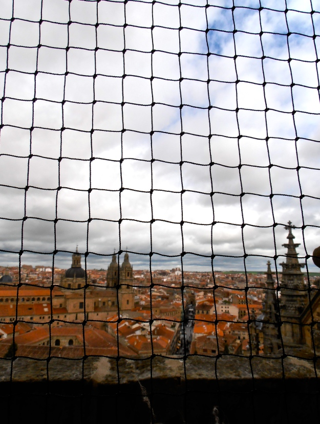 Salamanca view from Cathedral 1