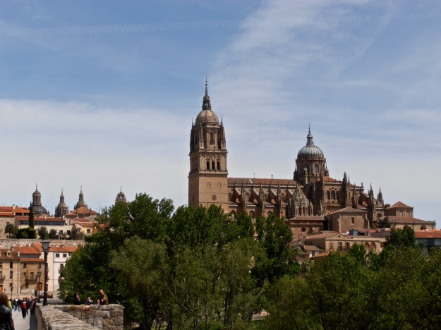 View of Salamanca cathedral from the Roman Bridge