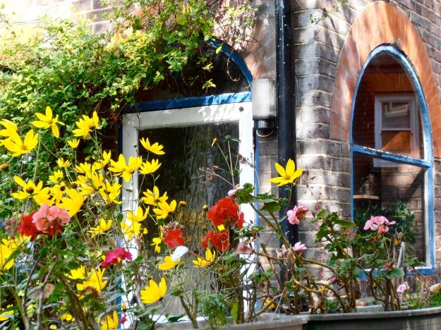 Hampstead garden 1
