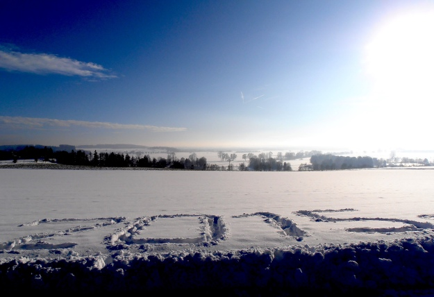 Not my handiwork, but perfect for a New Year's Day pic :)